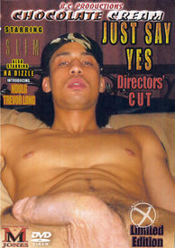 Just Say Yes Directors Cut (disc)
